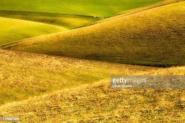Rolling farmland Southland