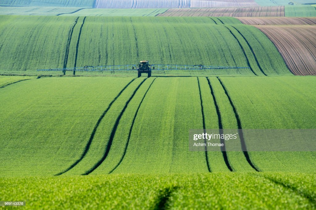 Rolling Fields, France, Europe : Stock Photo