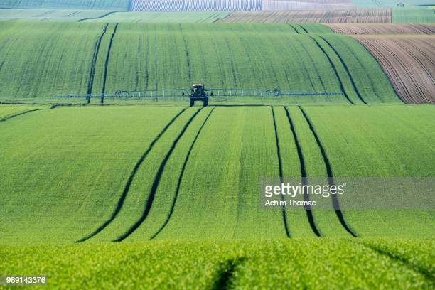 rolling fields, france, europe - troyes champagne ardenne photos et images de collection
