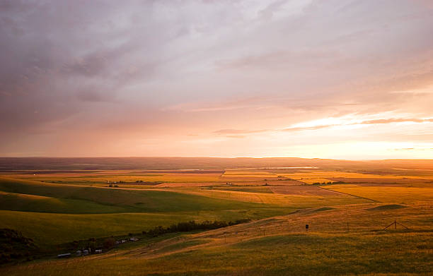 """""""Rolling Fields of Gold and Brown (Oregon, USA)"""""""