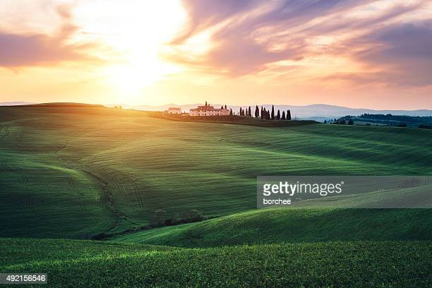 Rolling Fields Of Tuscany At Sunset