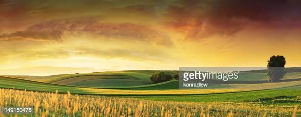 rolling fields-paysage coucher de soleil, vue panoramique - panoramique photos et images de collection