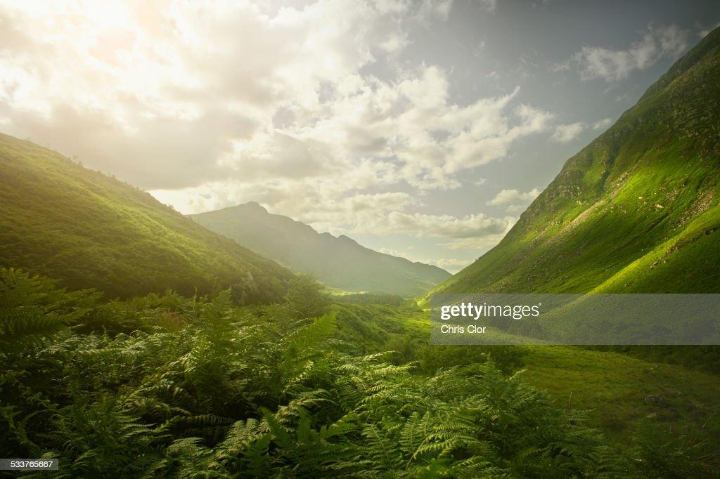 Rolling green hills in remote landscape : Foto stock