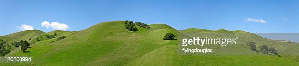 Rolling Green Hills of California Against Blue Sky, Landscape
