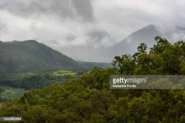 rolling green hills under a moody sky - atherton tableland stock pictures, royalty-free photos & images