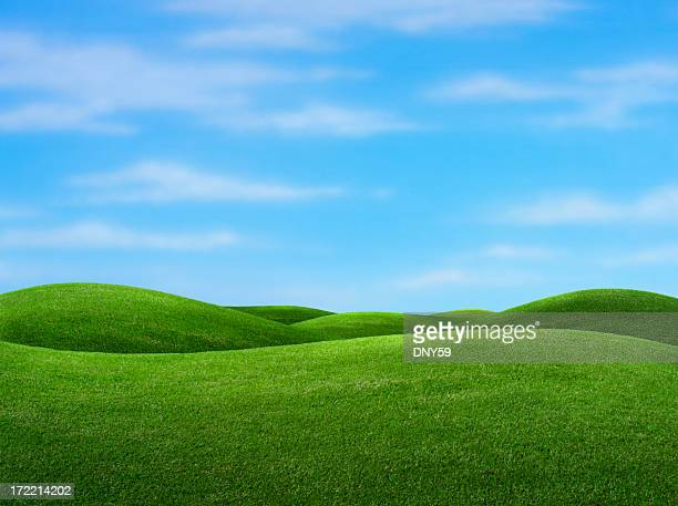 Rolling green hills with blue sky in background