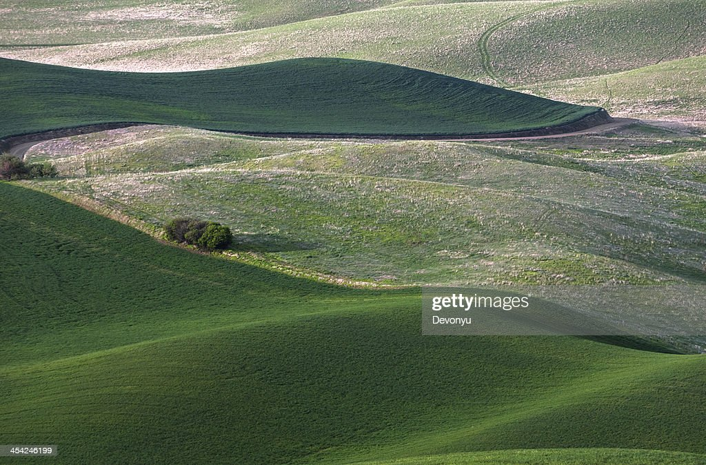 rolling hill and Farm Land : Stock Photo