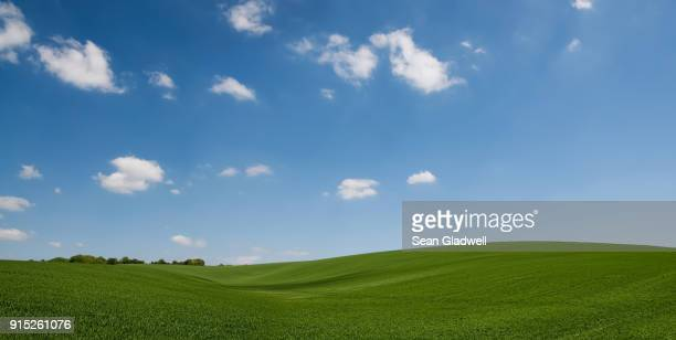rolling hill green crops - hill stock pictures, royalty-free photos & images