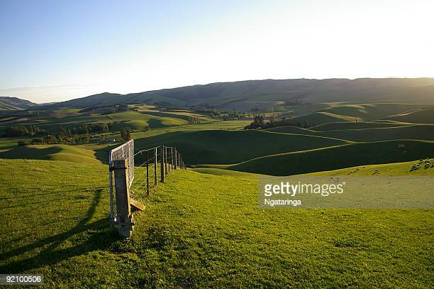 rolling hill pasture - rural scene stock pictures, royalty-free photos & images
