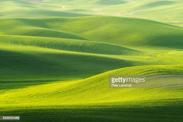 rolling hill - rolling landscape stock pictures, royalty-free photos & images