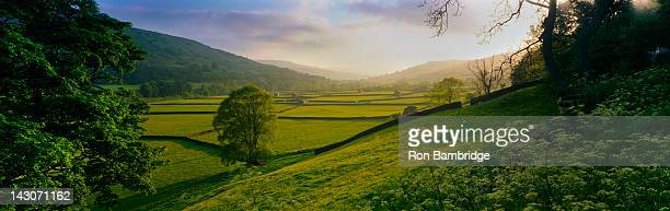 Rolling hills and pastures in rural landscape