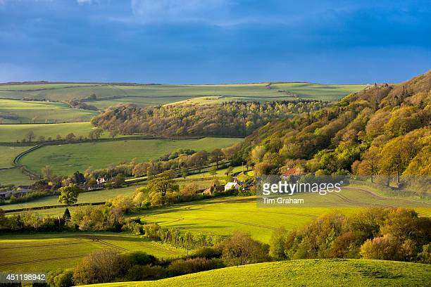 Rolling hills in Exmoor National Park in Somerset, United Kingdom
