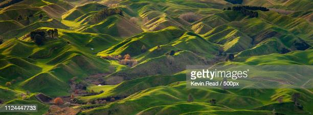 rolling hills of new zealand - rotorua stock pictures, royalty-free photos & images