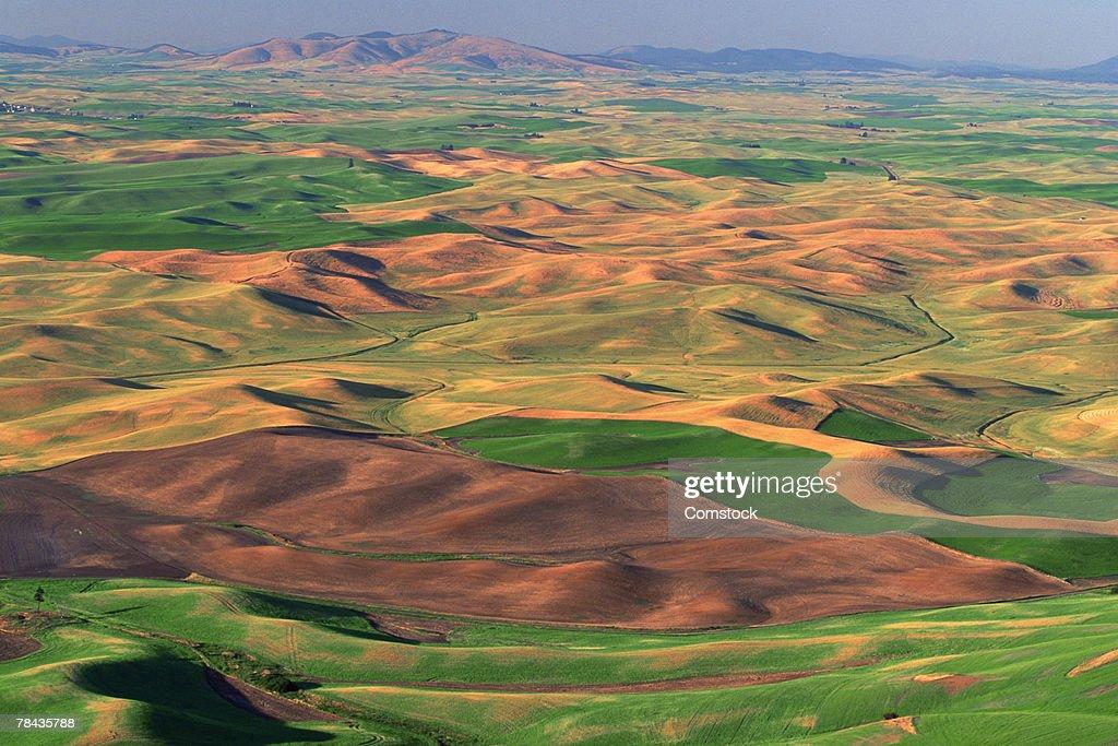 Rolling hills of Palouse farming region of eastern Washington : Stockfoto