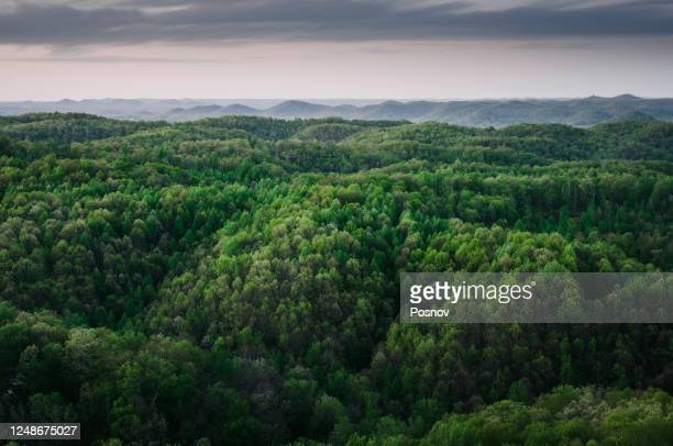 rolling hills of the midwest usa - appalachia stock pictures, royalty-free photos & images