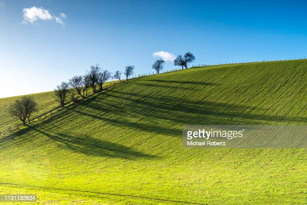rolling hills of trelleck in monmouthshire - grass area stock pictures, royalty-free photos & images