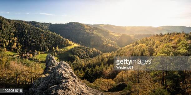 rolling landscape and karlsruher grat, ottenhoefen, black forest, germany - schwarzwald stock-fotos und bilder