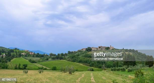Rolling landscape in Val d'Orcia, Tuscany, with San Quirico d'Orcia in the background, Italy