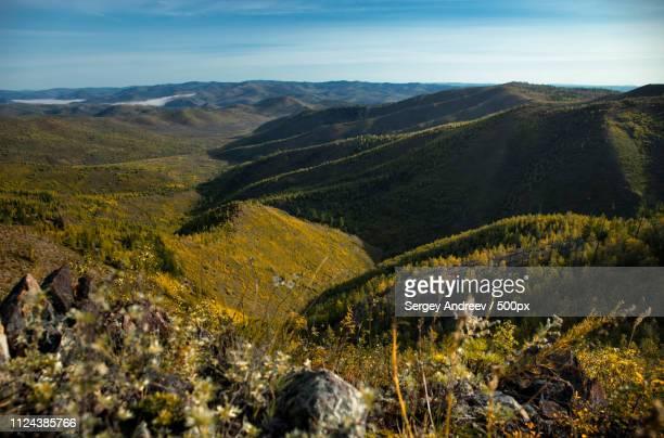 Rolling landscape of forested hills