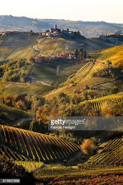 rolling landscape of serralunga d'alba at sunset, piedmont, italy - piedmont italy stock pictures, royalty-free photos & images
