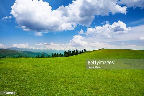 Rolling Meadow Landscape, Azad Kashmir HDR