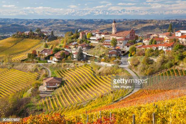 Rolling Mediterranean landscape with vineyards and town on hill.