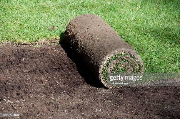 Einführung neuer Kunst- und die neuen Rasen mit Gras