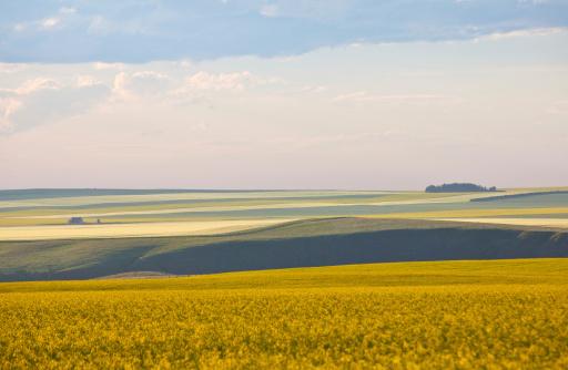 Rolling Prairie Landforms 175506347