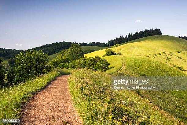 rolling summer hills - rolling landscape stock pictures, royalty-free photos & images
