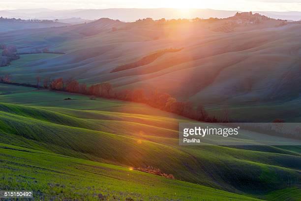 Rolling Toskana Landschaft am Abend Sonnenlicht, Val D'orcia, Italien
