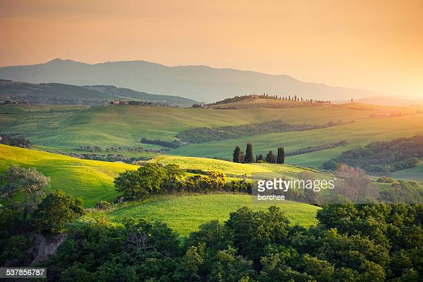 rolling tuscany landscape - hill stock pictures, royalty-free photos & images
