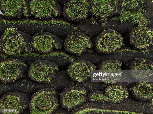rolls of grass turf