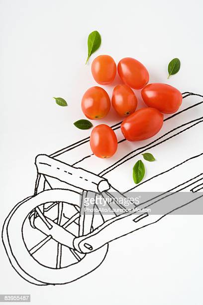 Roma tomatoes and basil leaves on drawing of cart