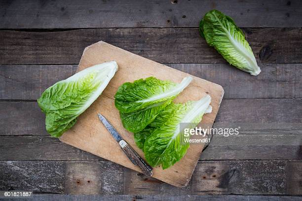 Romaine lettuce and pocket knife on wooden board