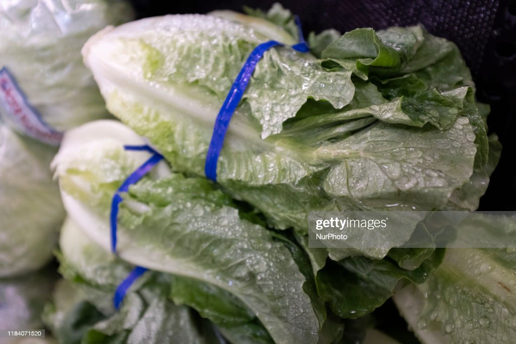 Romaine Lettuce Can Be Seen At A