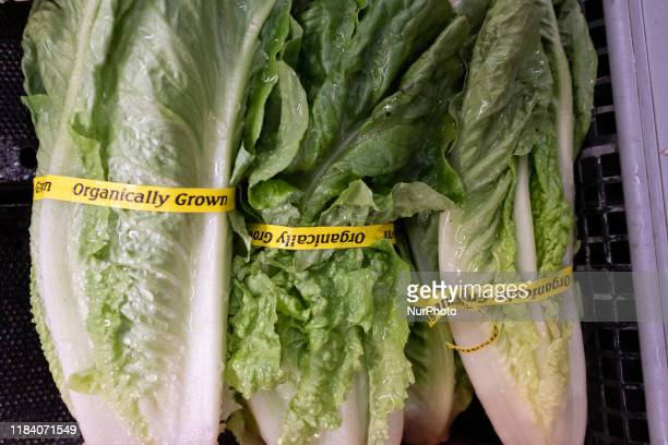 Romaine lettuce can be seen at a store in Mountain View California United States on Friday November 22 2019 FDA and CDC officials have urged that...