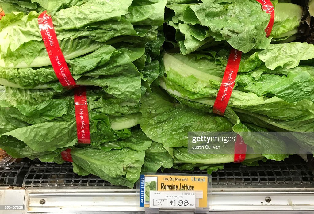 CDC Warns Americans Against Eating Romaine Lettuce After E Coli Outbreak : News Photo