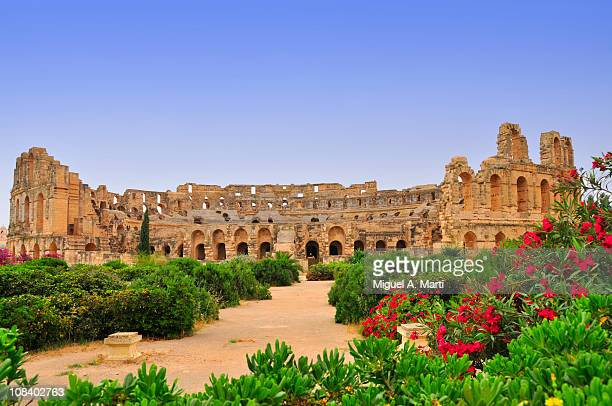 roman amphitheatre of el jem (tunisia) - tunisia stock pictures, royalty-free photos & images