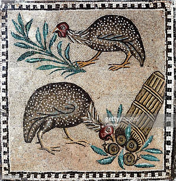 guineafowls mosaic 1st or 2nd century BC Museo Nazionale Romano Rome Italy