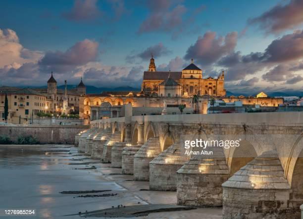 roman bridge and la mezquita in cordoba, andalusia, spain - mezquita fotografías e imágenes de stock