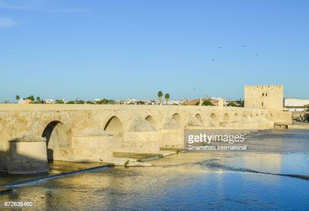 Roman bridge in Cordoba under the sunlight of a warm spring evening, Spain