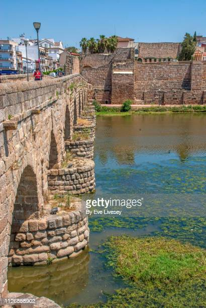 roman bridge over the guadiana river - flying buttress stock photos and pictures