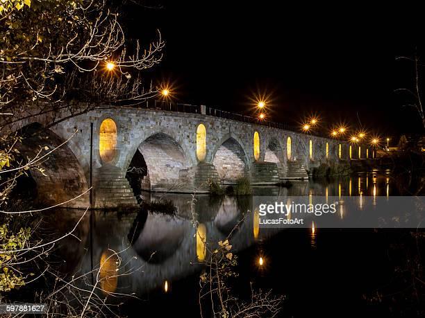Roman bridge Zamora