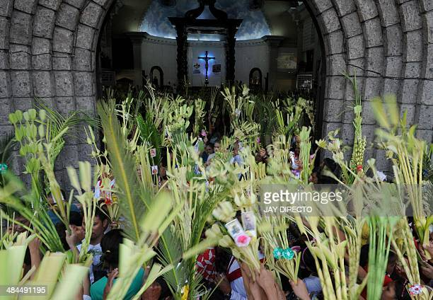 Roman Catholic devotees wave their palm fronds during Palm Sunday celebrations in Manila on April 13 2014 Palm Sunday marks the start of the lenten...