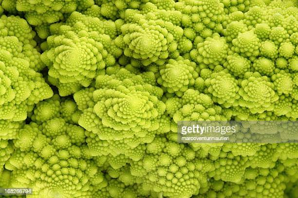 roman cauliflower - magnification stock pictures, royalty-free photos & images