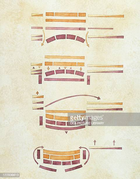 Roman civilization 3rd century bC Second Punic War Diagram illustrates Battle of Cannae 216 BC Color illustration