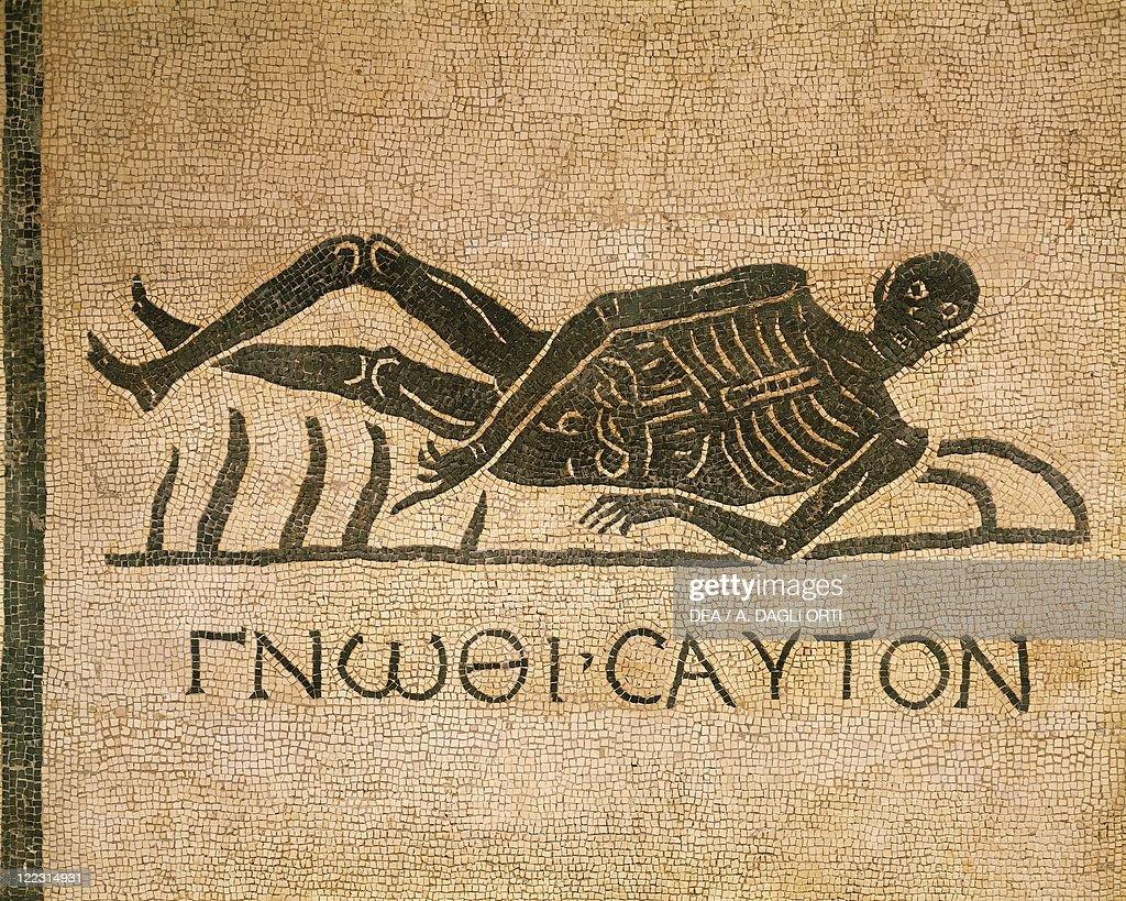 Mosaic depicting human skeleton with inscription Know thyself  : News Photo