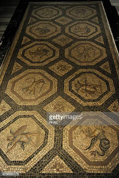 Roman floor mosaic Coloured stone and mortar 2nd century AD From Cos Archaeological museum Istanbul Turkey