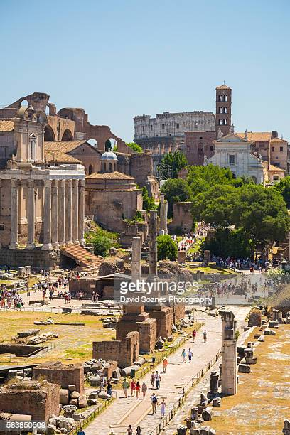 roman forum in rome, italy - roman forum stock pictures, royalty-free photos & images