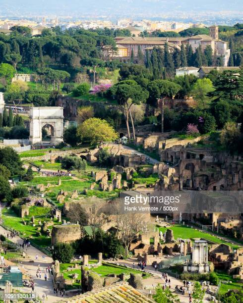 roman forum overlook - hank vermote stock pictures, royalty-free photos & images
